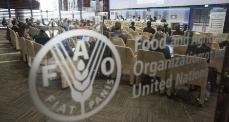 La Food and Agriculture Organization propose actuellement des postes.