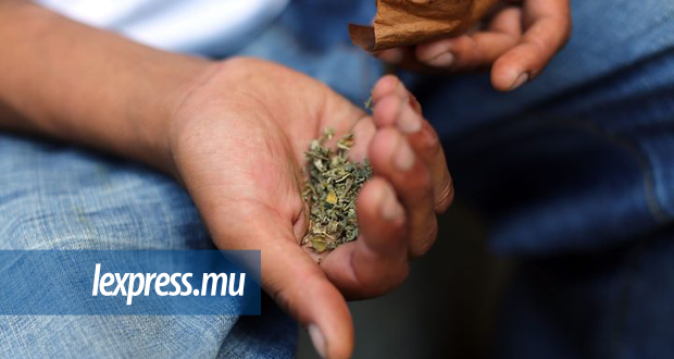 The rise of synthetic drugs in Paradise Island (Part 2) | lexpress mu